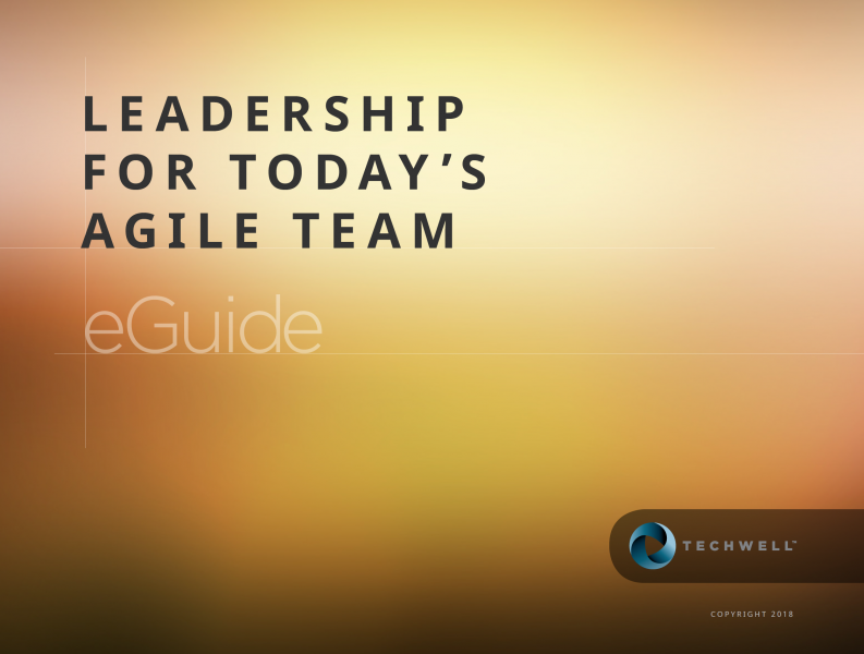 Leadership for Today's Agile Team